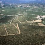 Hisenda Miret vineyard Aerial View