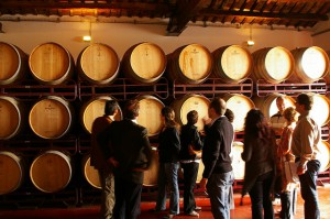 Winery-visit-paresbalta