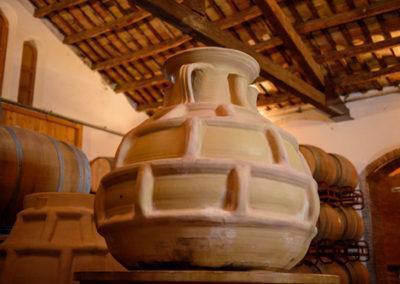 Parés Baltà elaboració amb Amphora