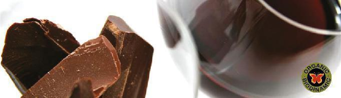 Wine Pairing at Parés Baltà Winery in the heart of Penedès, Event Chocolate Pairing