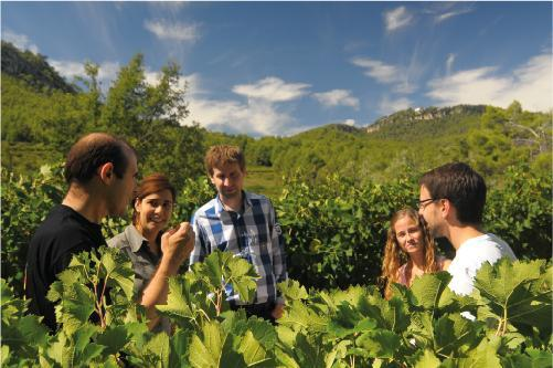 Experience Winetourism at Parés Baltà Winery, in the heart of Penedès
