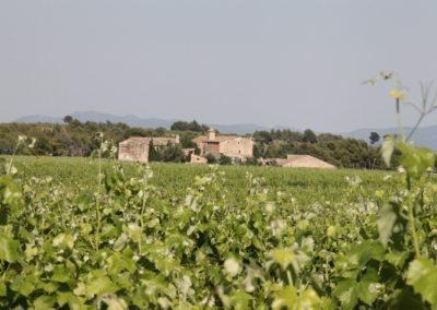 Hisenda Miret- Parés Baltà