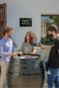 Botiga online de vins i caves visita la bodega gourmet pares balta
