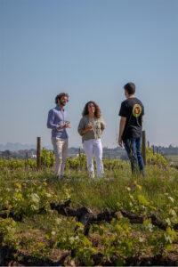 Botiga online de vins i caves visita la bodega pares balta