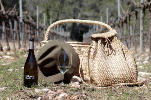Vi blanc Indigena Garnatxa