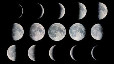 The Moon and the tasting of biodynamic and/or organic wines