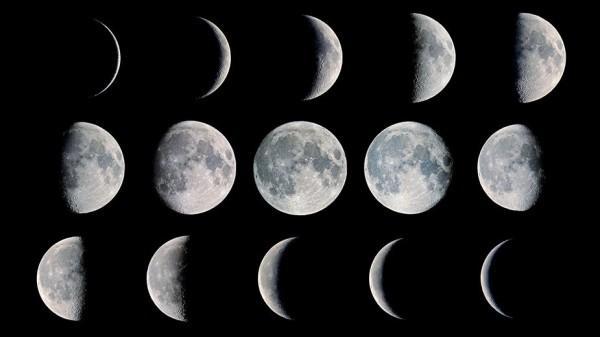 La Luna y la cata de vinos biodinámicos y/o ecológicos