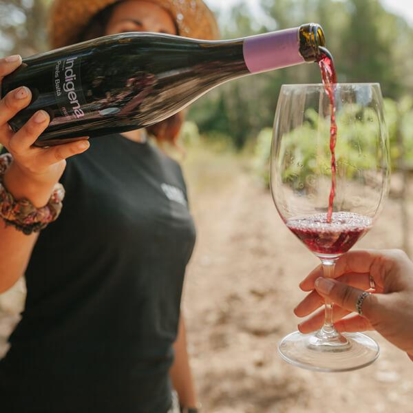Indigena 100% garnatxa vi ecològic fresc