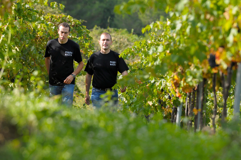 Family winery paresbalta jordielias 128