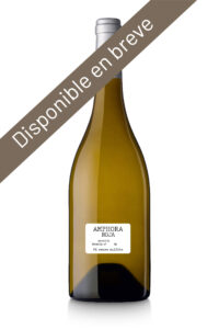 Bodega familiar vino amphora roja pares balta disponible en breve es 1
